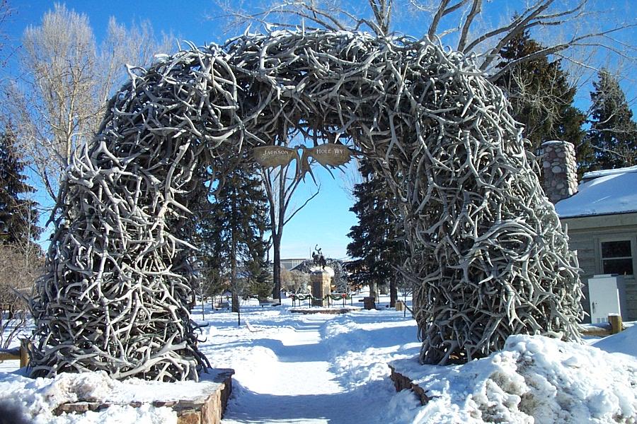 elk-antler-arch