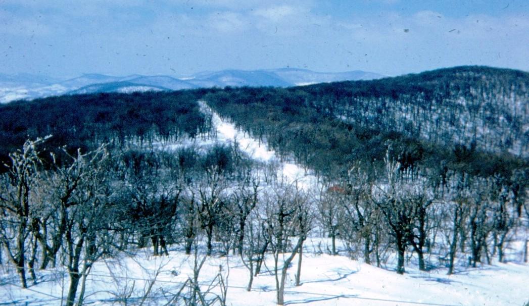 looking over the summit ridge
