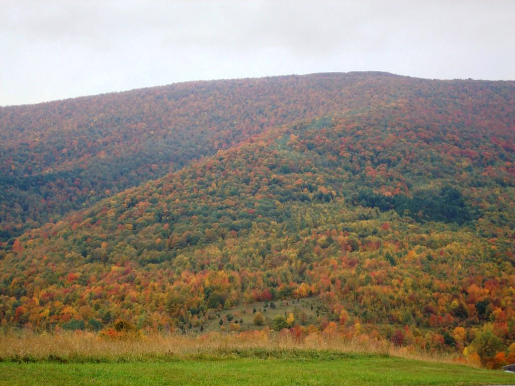 Bearpen Mountain in autumn
