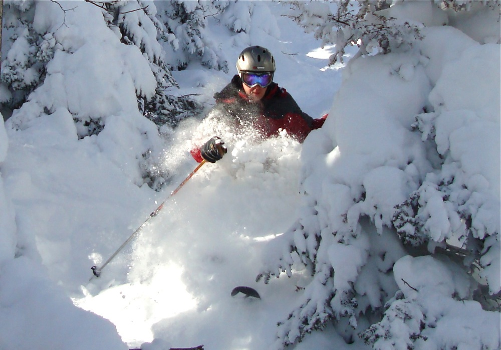 Jay Peak Resort Tree Skiing