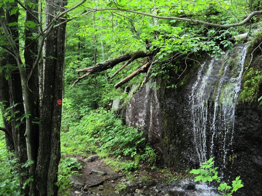 Trail around 13th Lake
