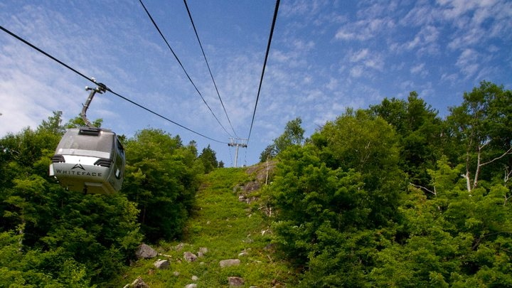 Whiteface Mountain Gondola