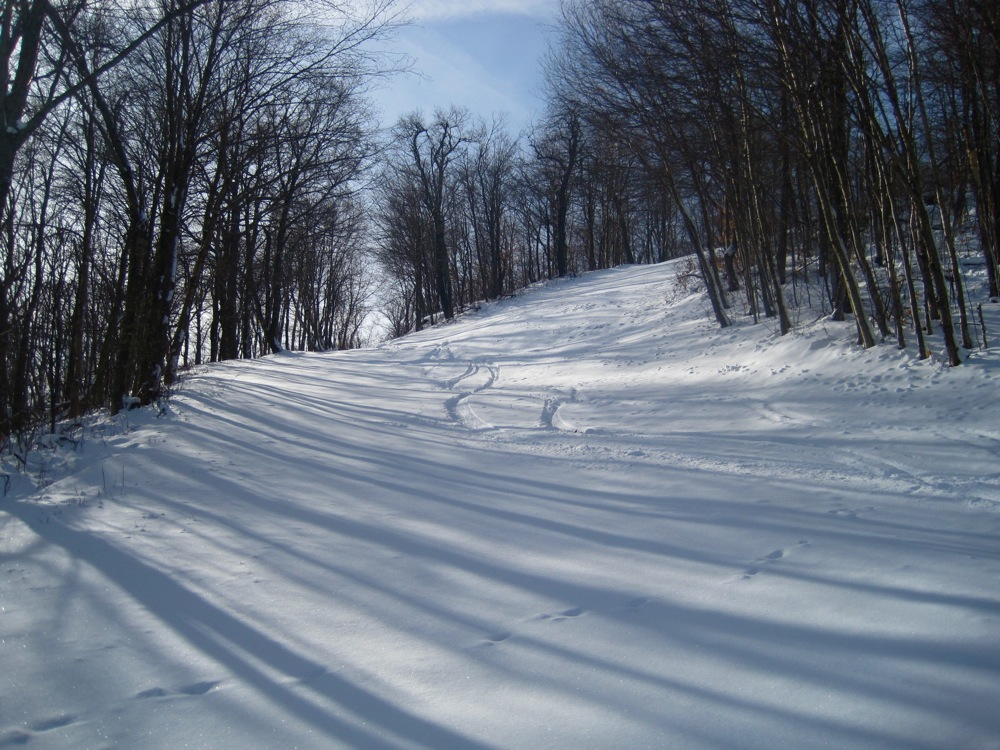first tracks at Plattekill