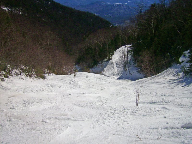 Whiteface Slide Out