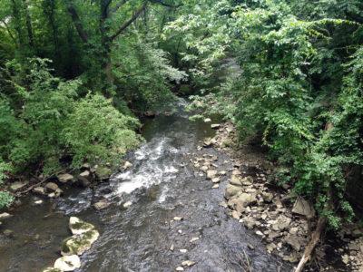 Saw Mill Gorge