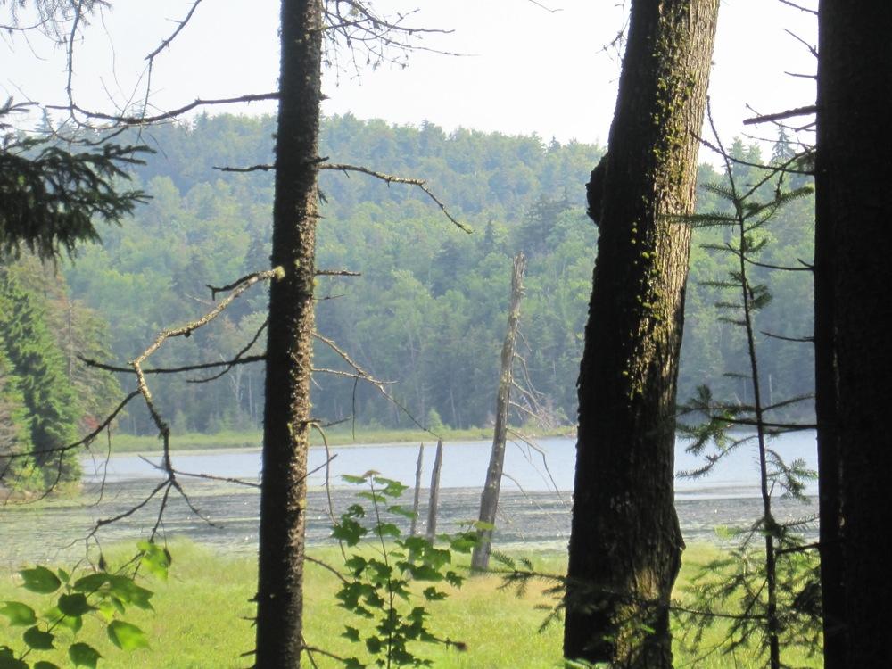 Botheration Pond