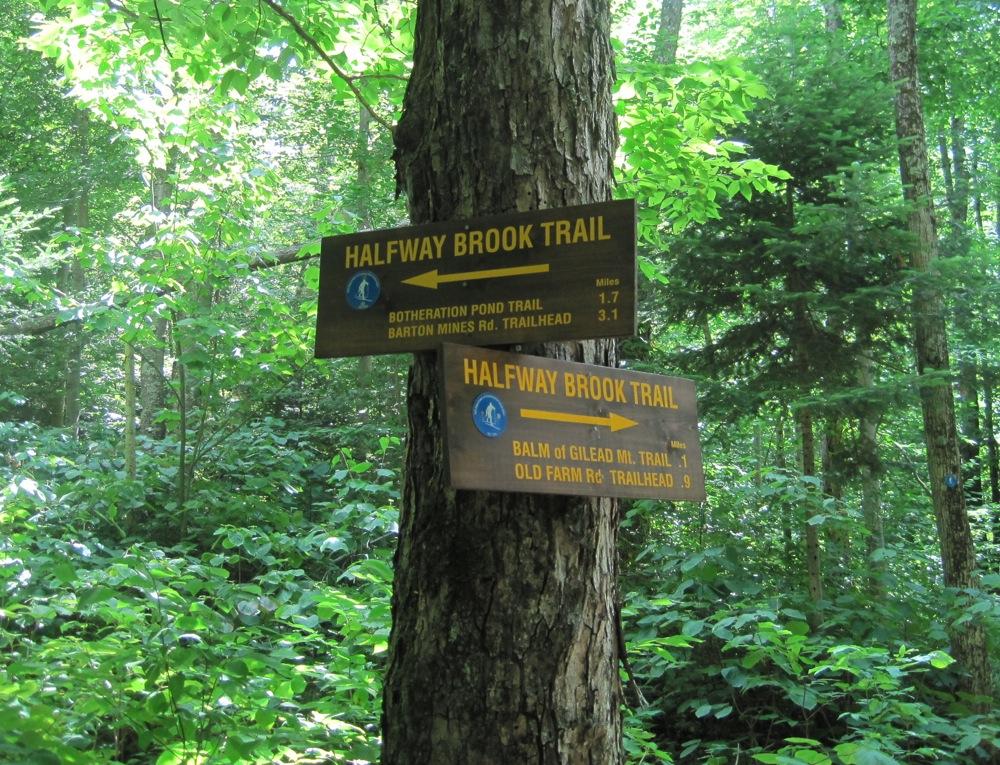 Halfway Brook Trail Signs