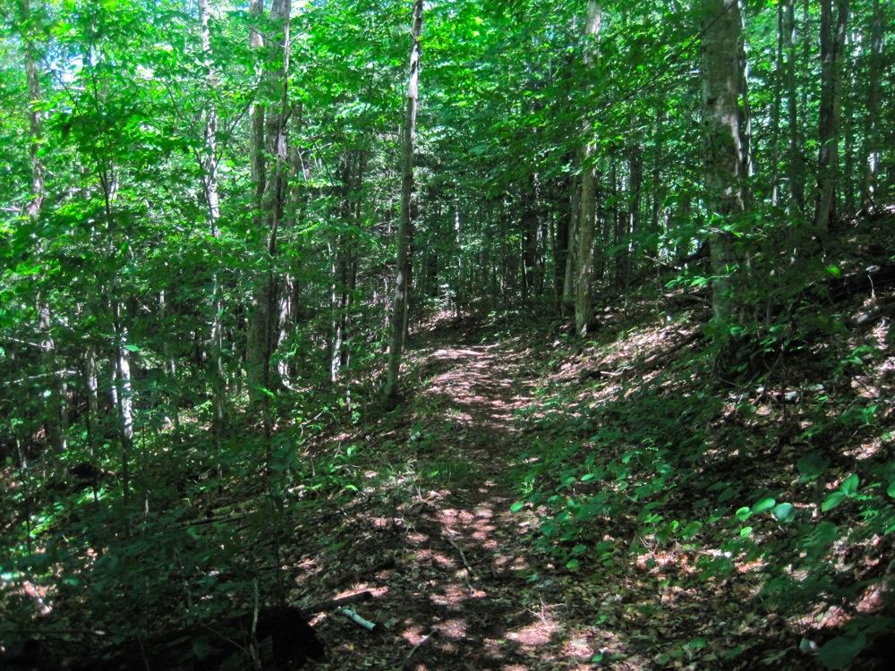 Smart Trail Construction.