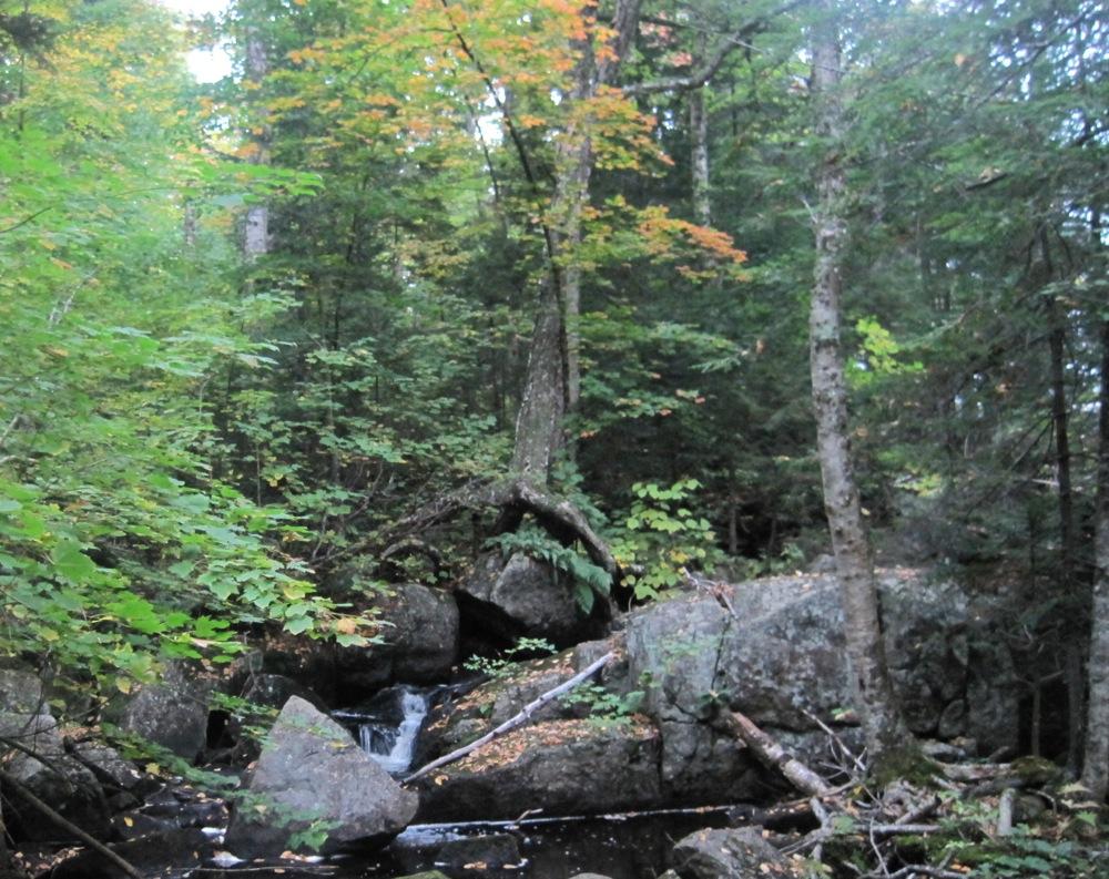 Peaked Mountain Pond Brook.