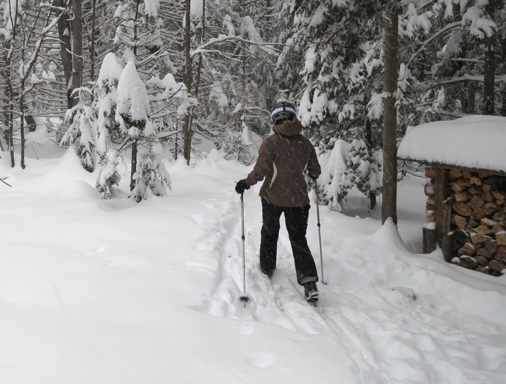 Skiing in the woods.