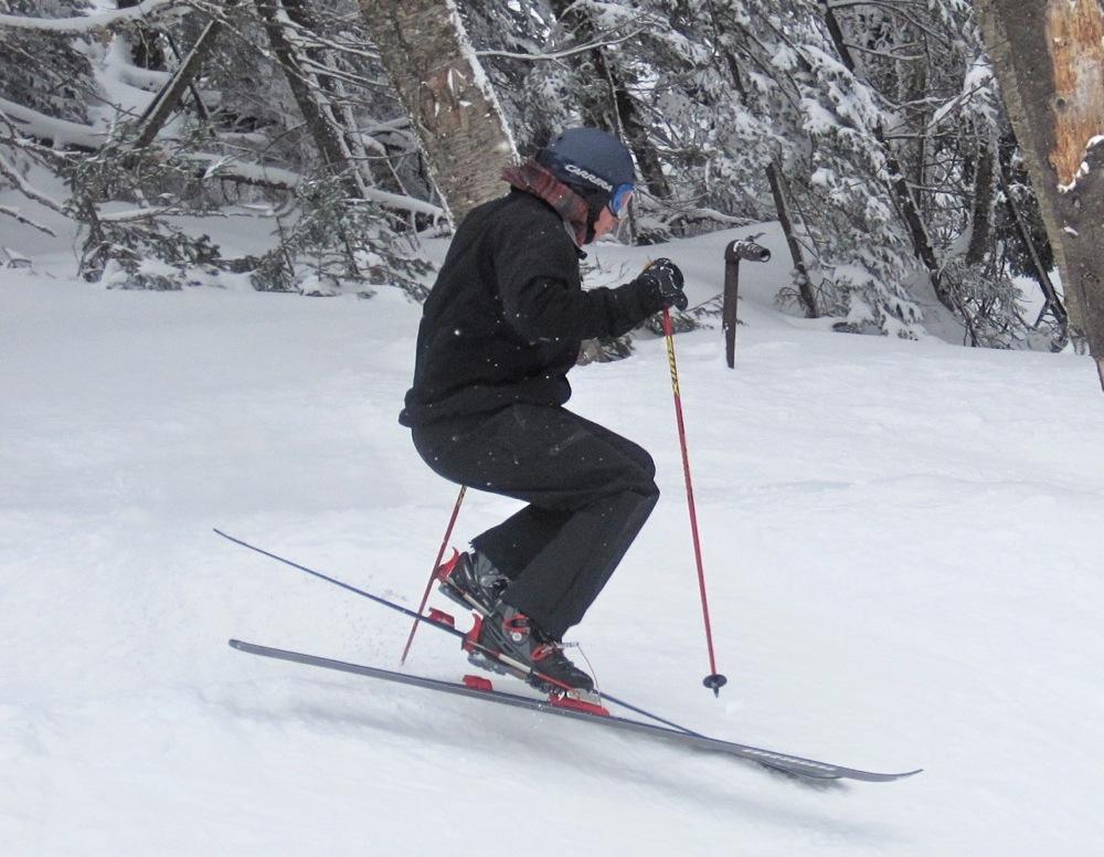 Expert Skier