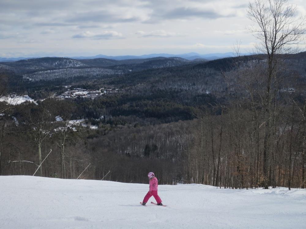 Skier on Expert Terrain.