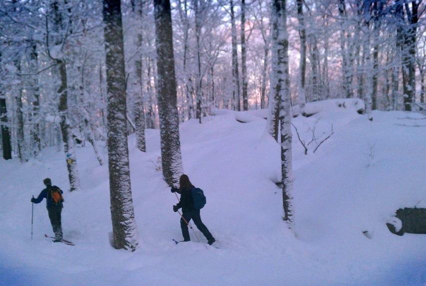 Skiing to the summit of Dewey Mountain