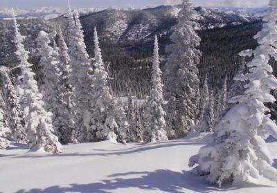 Montana Skiing