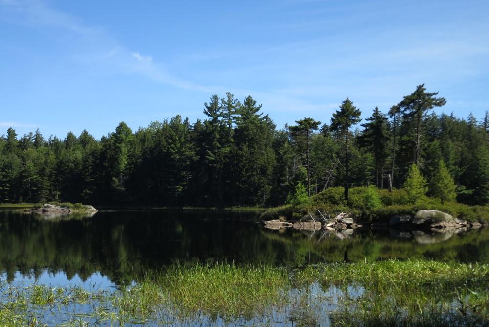 Photo of Ross Pond NY
