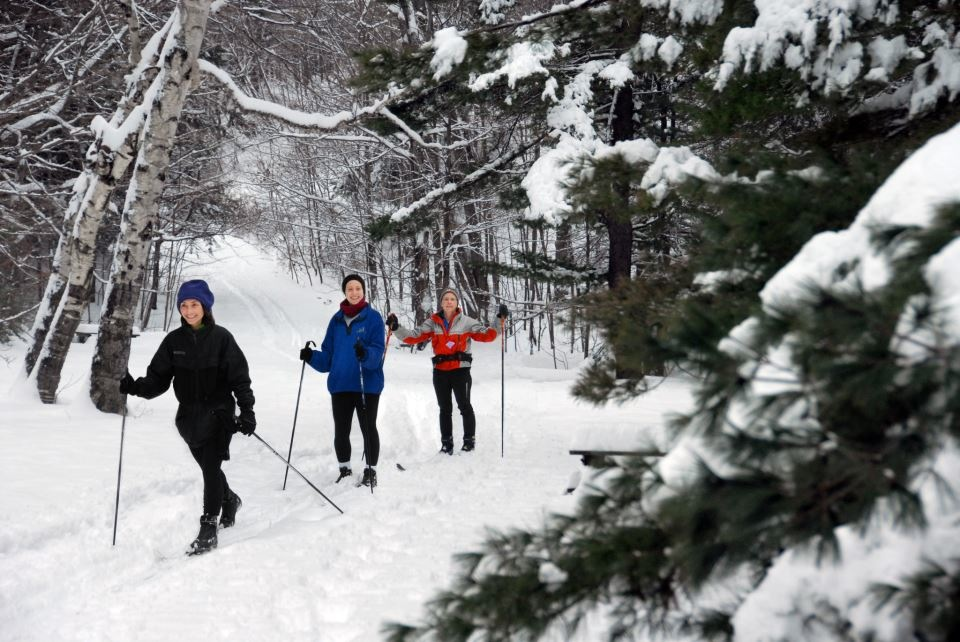 Three-Nordic-Skiers