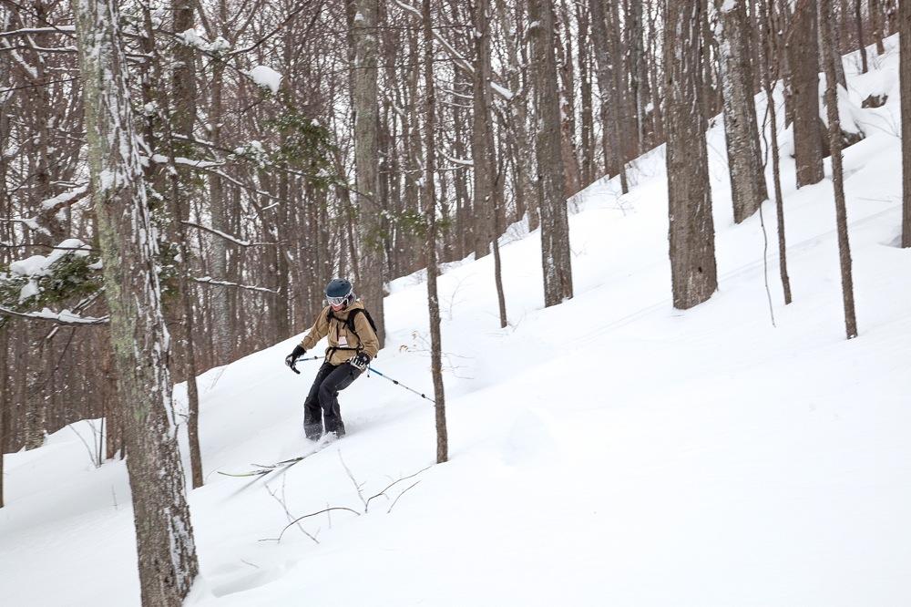 Hunter-Mountain-Trees