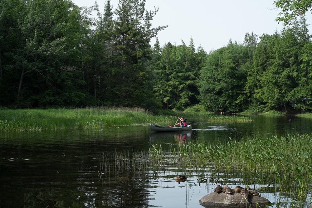 Canoeing-Lewey-Lake