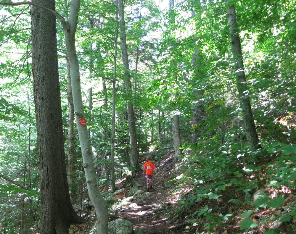 Vanderwhacker Mtn Trail