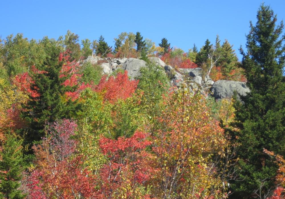 Shanty-Cliffs-NY