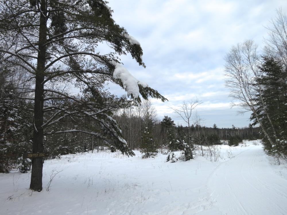 Trapper-Trail