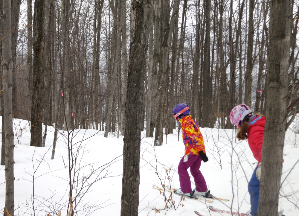 Tree-Skiing