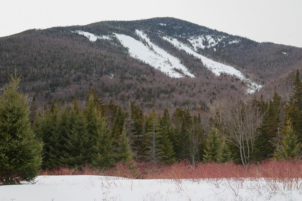Wright Peak Slide