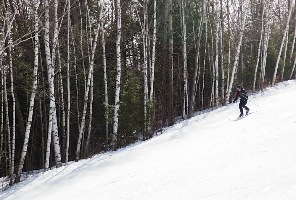 Telemark-Skier