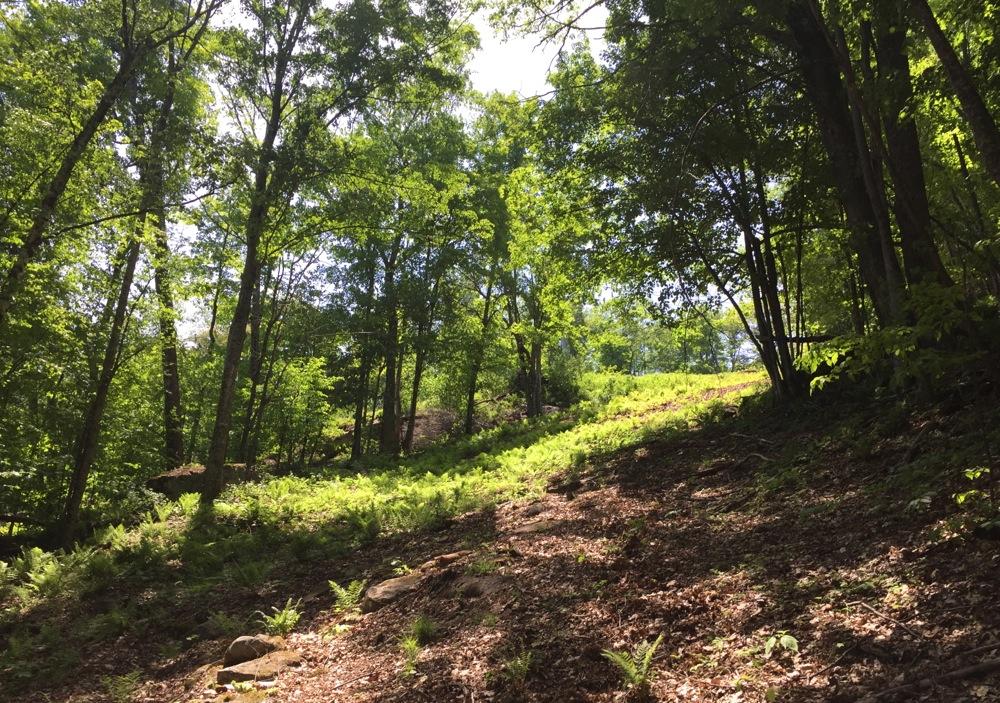 Hudson-Trail