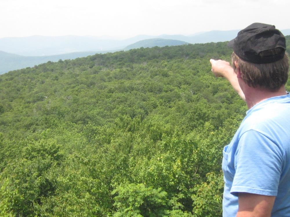 View-towards-Plattekill