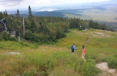 Saddleback-view