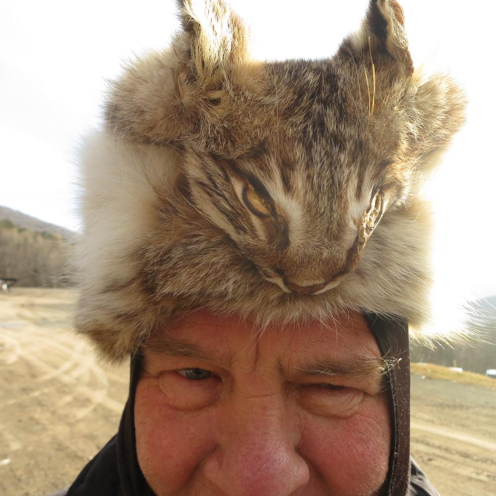 bobcat-hat