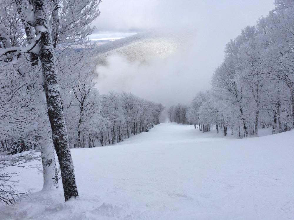 mont-sutton-trail