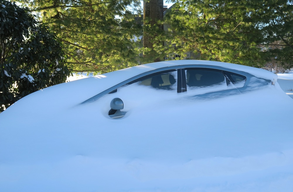 zeldas-car
