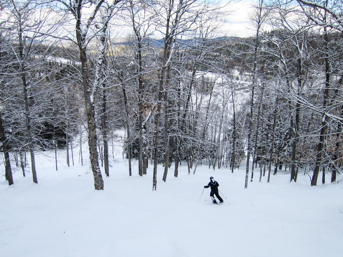 tree skiing at belle neige