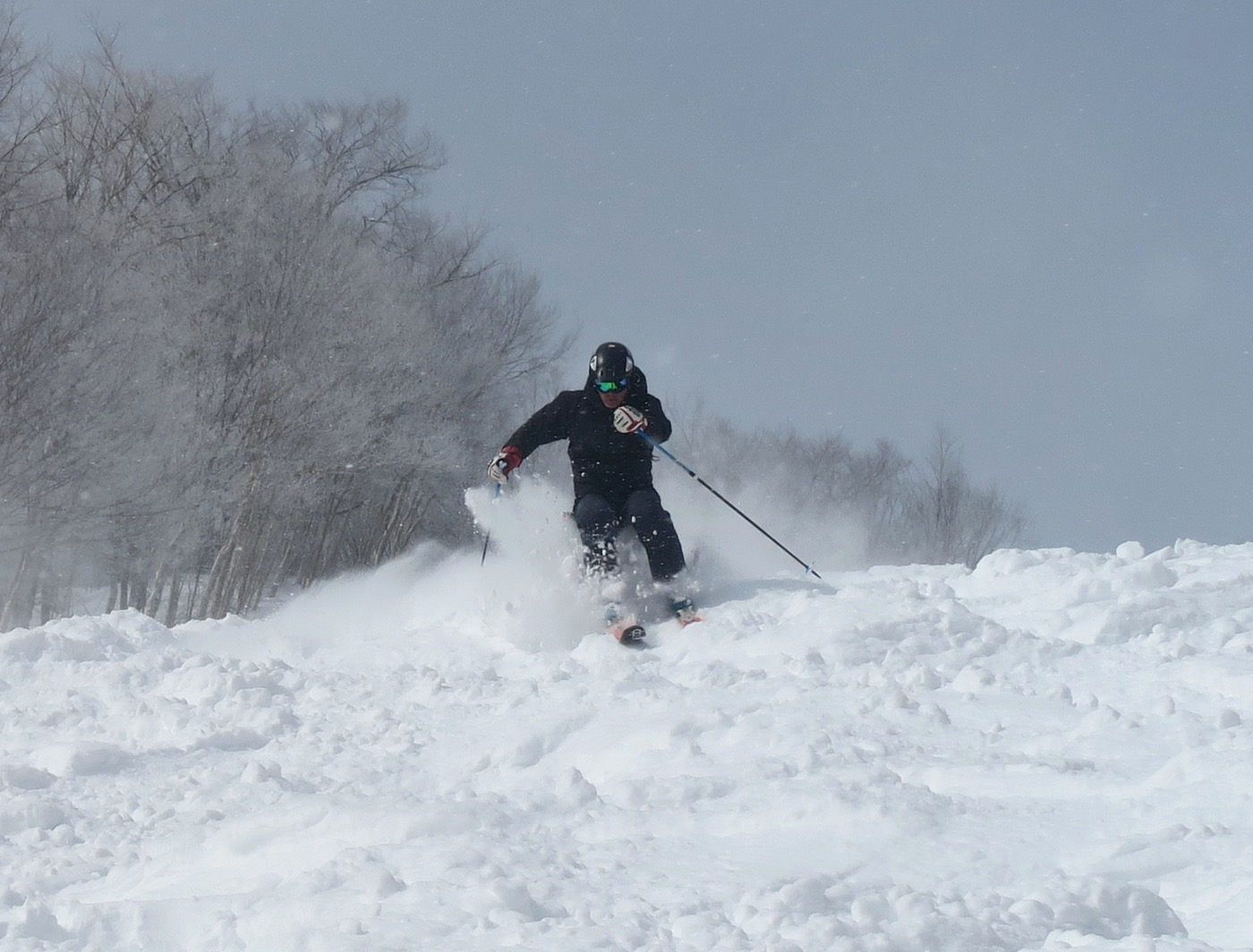 skiing winter storm stella