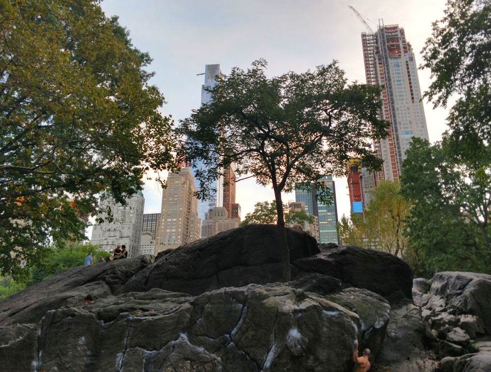 rat rock in central park