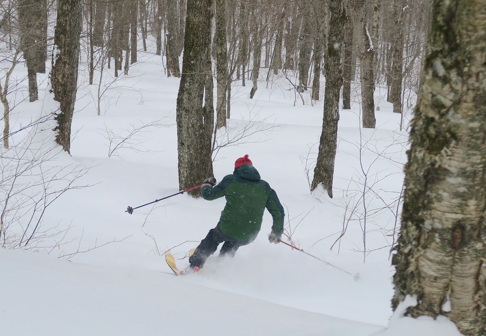 skiing in the trees without a helmet
