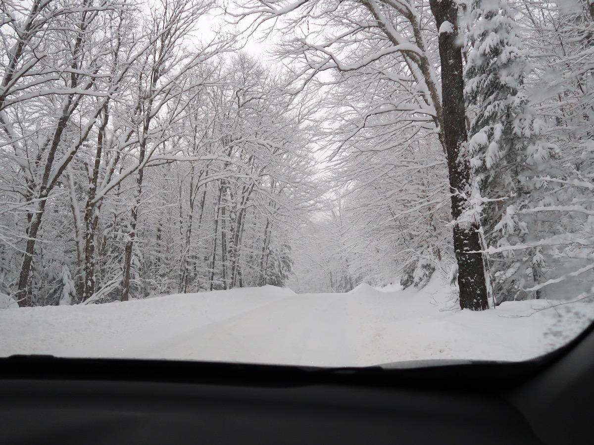 McCauley Mountain Road
