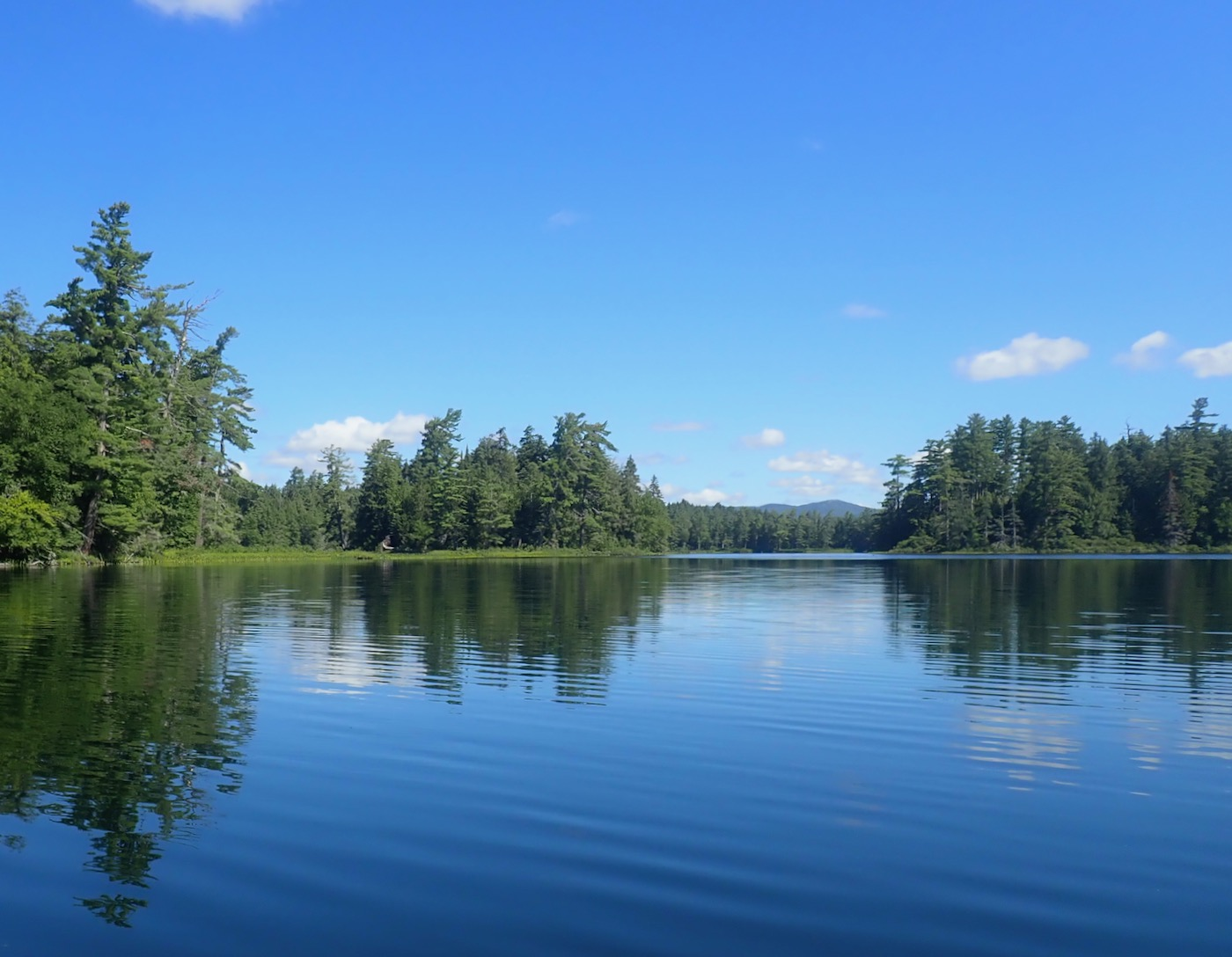 Follensby Clear Pond