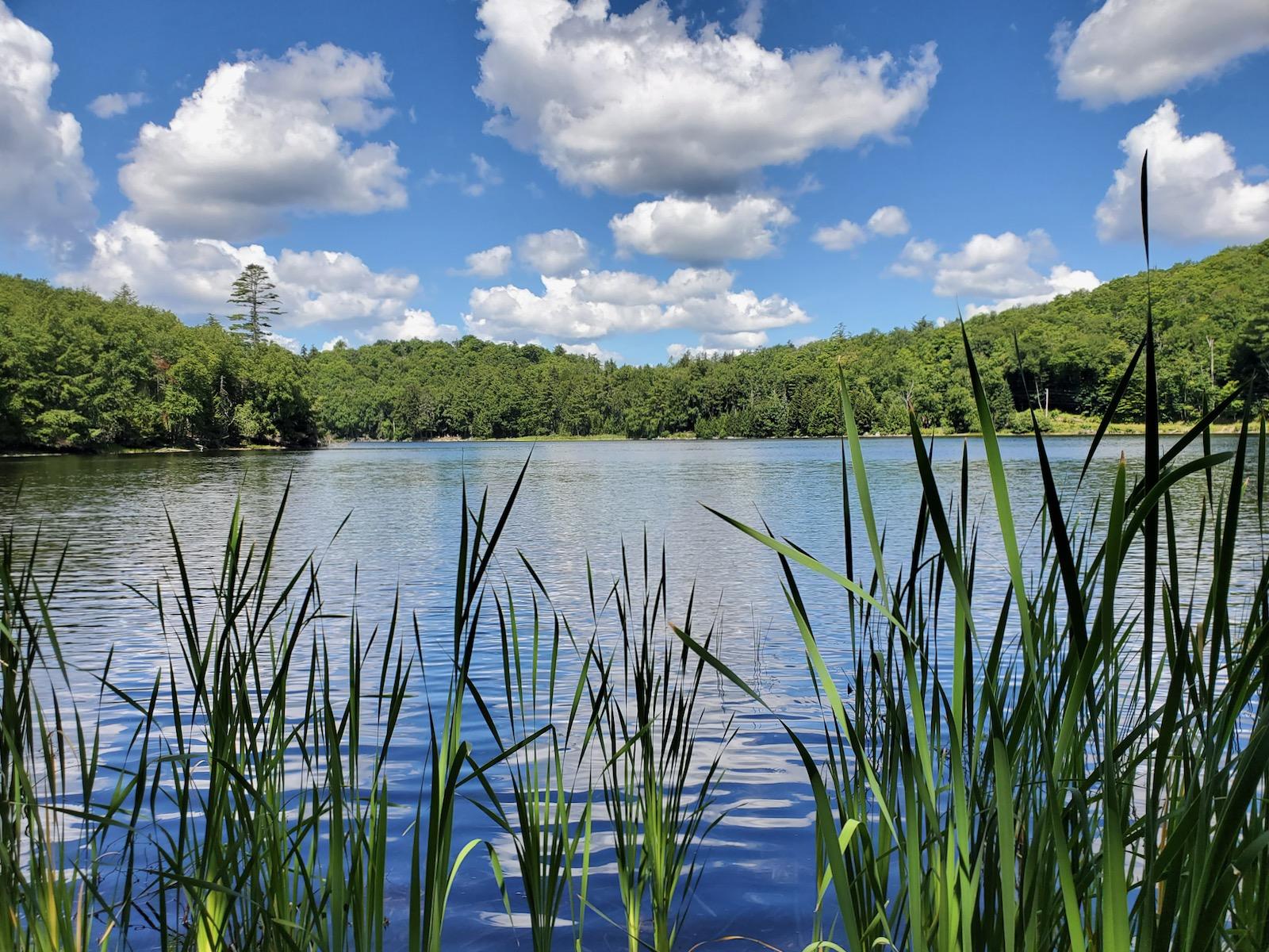 Huntley Pond