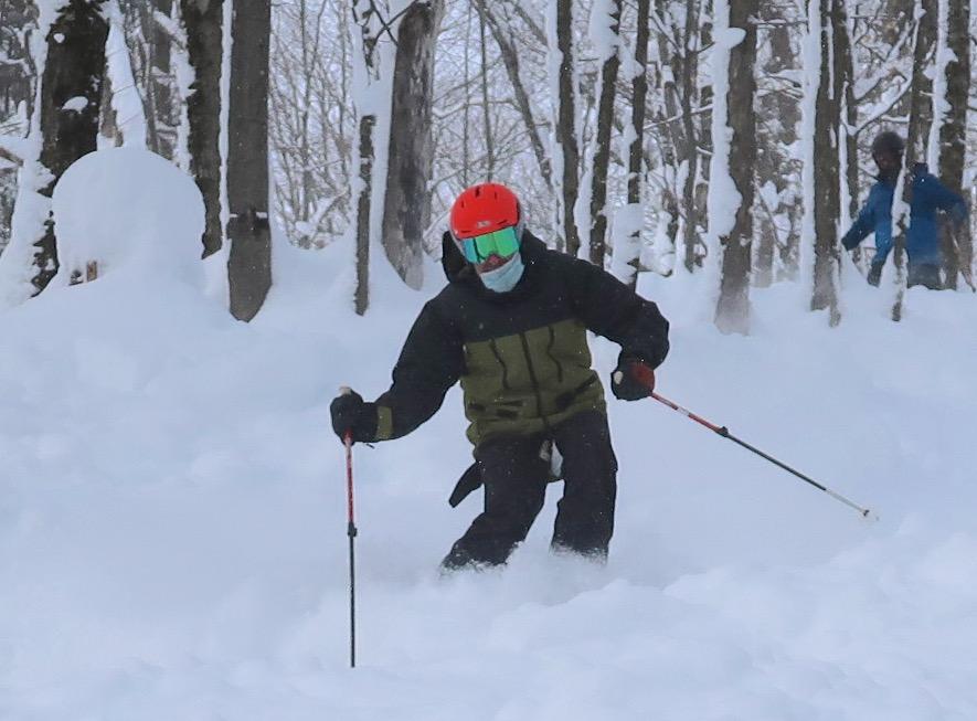 Snow Ridge tree