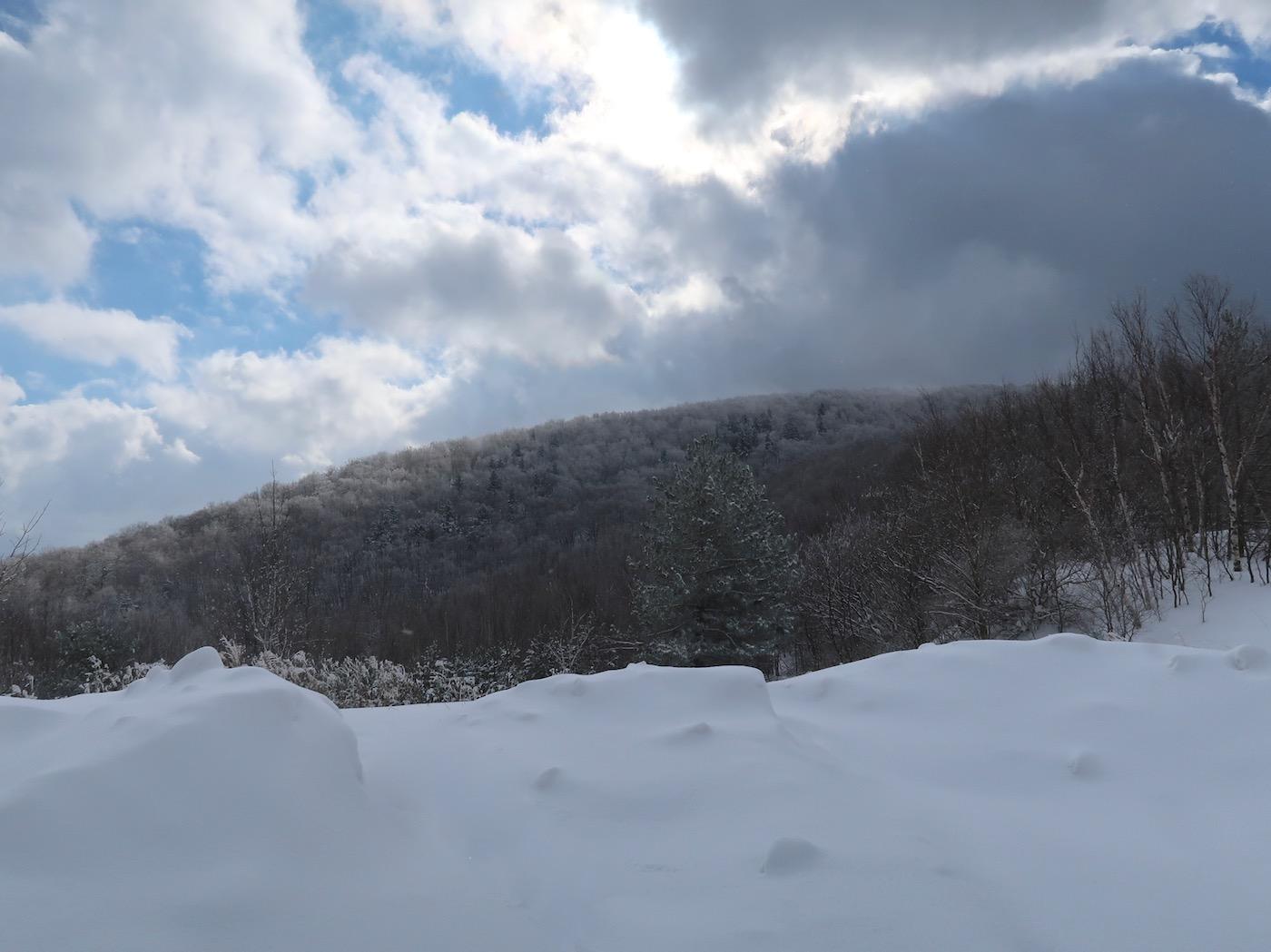 Mount Raimer