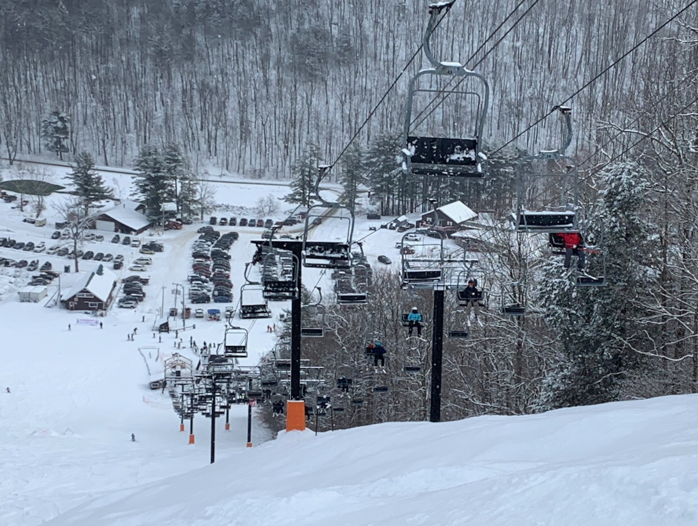 Willard steeps
